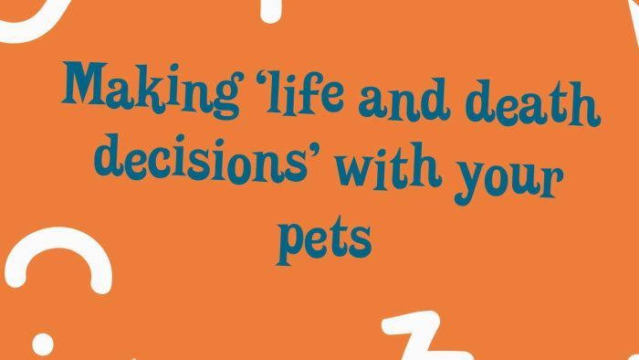 """Making """"life and death"""" decisions for your pet"""