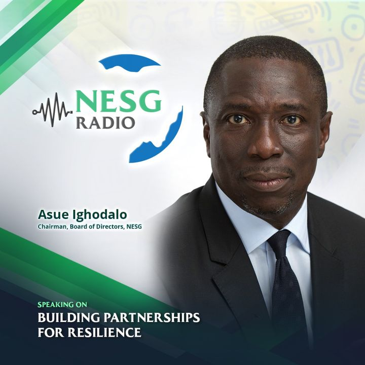 Building Partnerships For Resilience - Asue Ighodalo