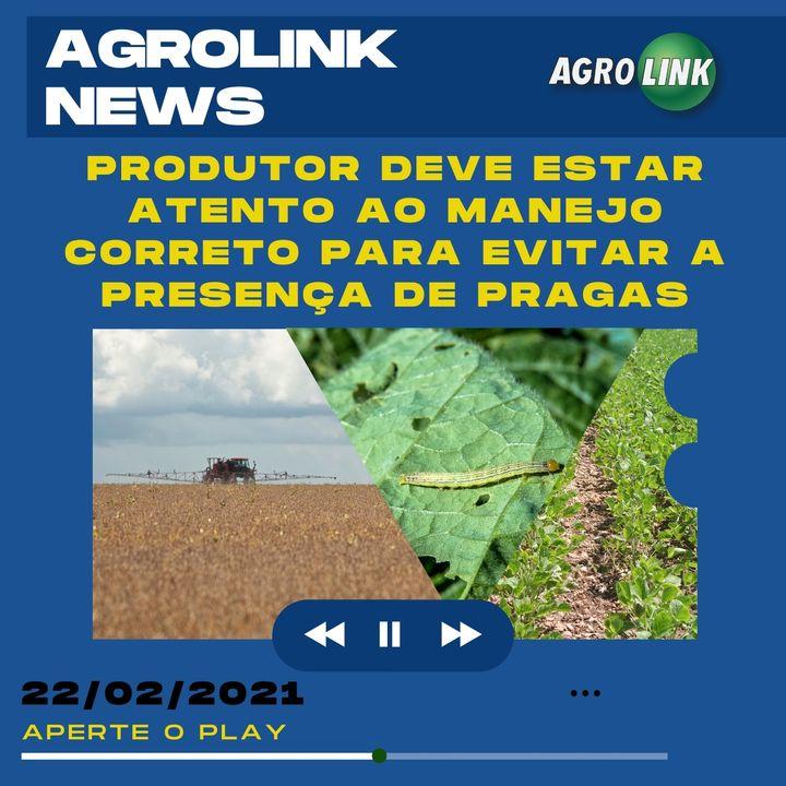 Agrolink News - Destaques do dia 22 de fevereiro