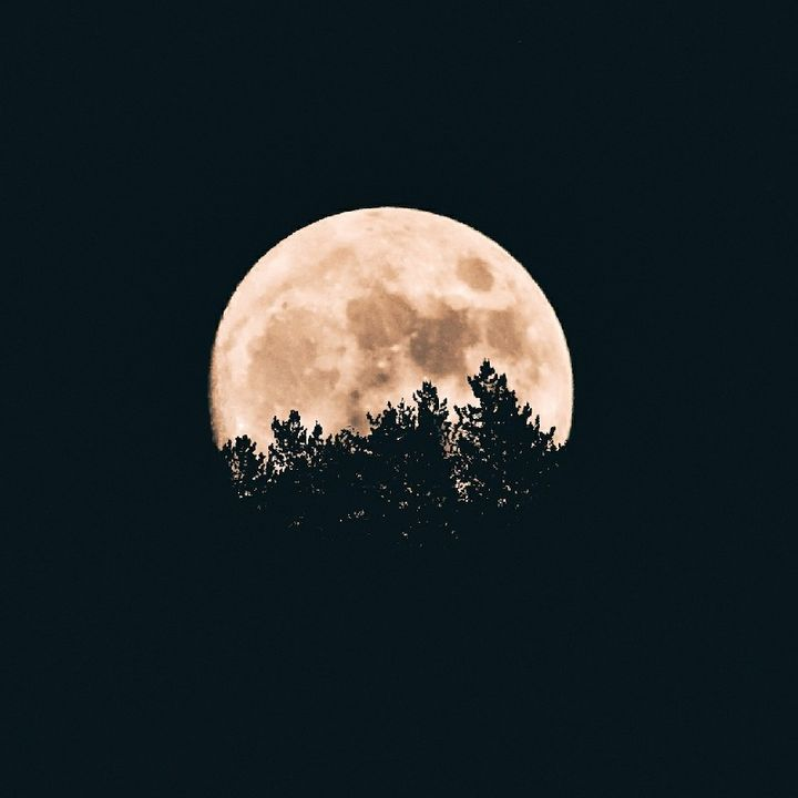 Ay Işığı