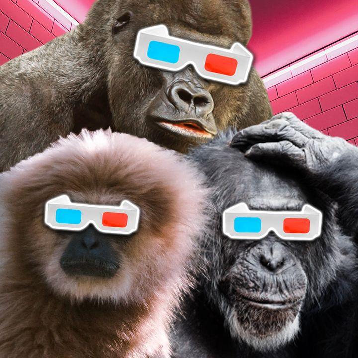 Our Favorite FPS Games and Genres | Media Crash Ep. 20