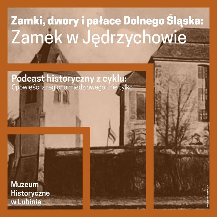 Zamki, dwory i pałace Dolnego Śląska -  Zamek w Jędrzychowie