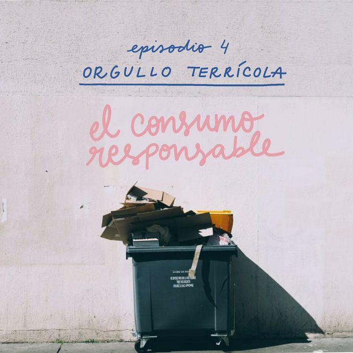 El consumismo nos consume. Parte II. ¿Cómo encontrar alternativas de consumo responsable?