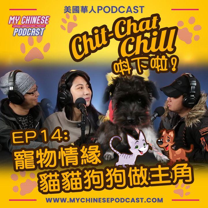 EP14: 寵物情緣 貓貓狗狗做主角