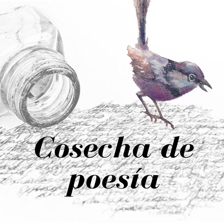 T2: E1 Bajo la mirada del amor: Gabriela Mistral