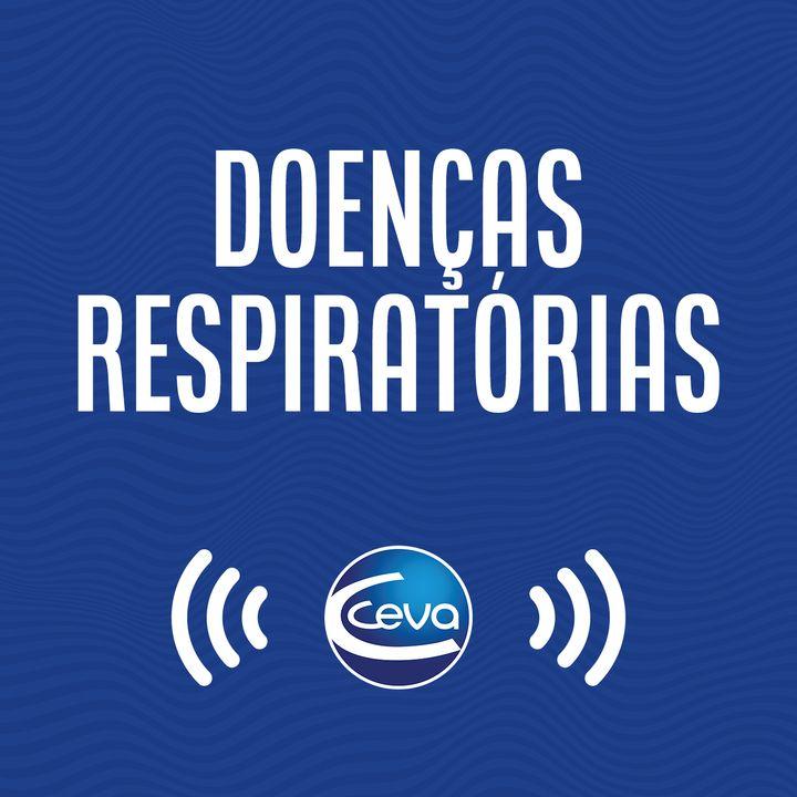Respiratório #04 Prevenção a doença respiratória bovina