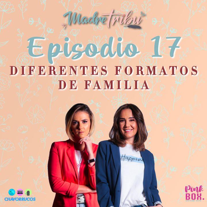 EP 17 Diferentes Formatos de Familia