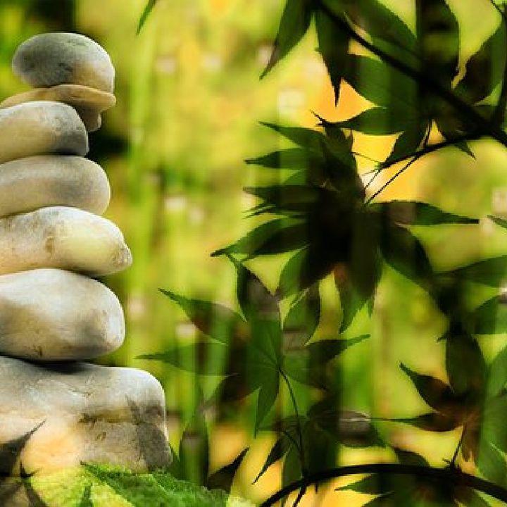 Episode 224 - Meditation Talk, What Is Meditation