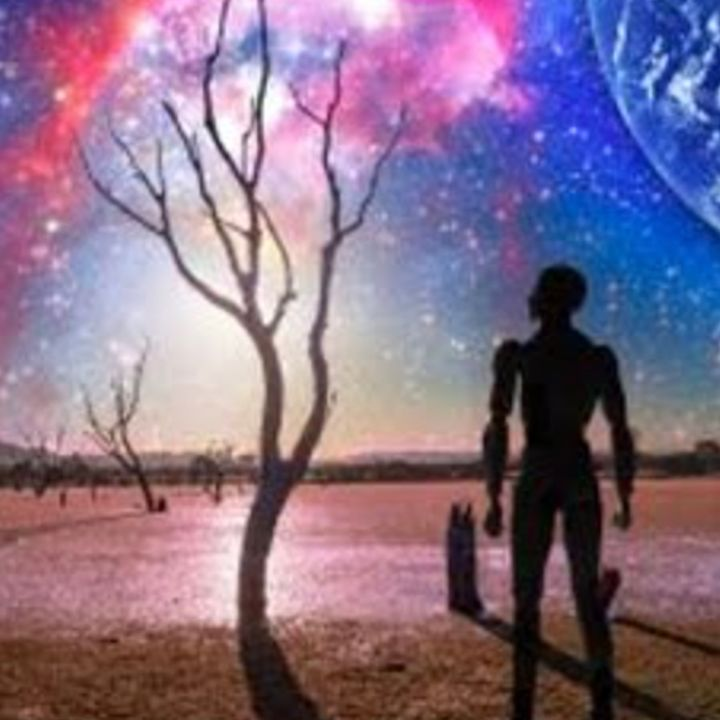 The Entire Universe Is One Big Alien