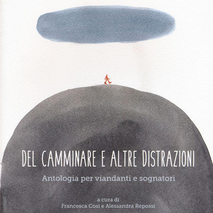 """Alessandra Repossi """"Del camminare e altre distrazioni"""""""