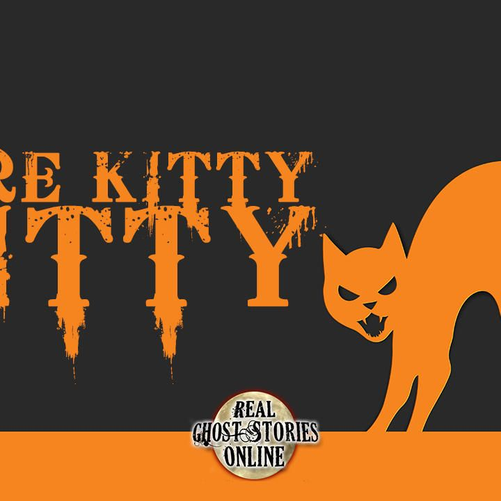 Here Kitty, Kitty | RGSO Flashback