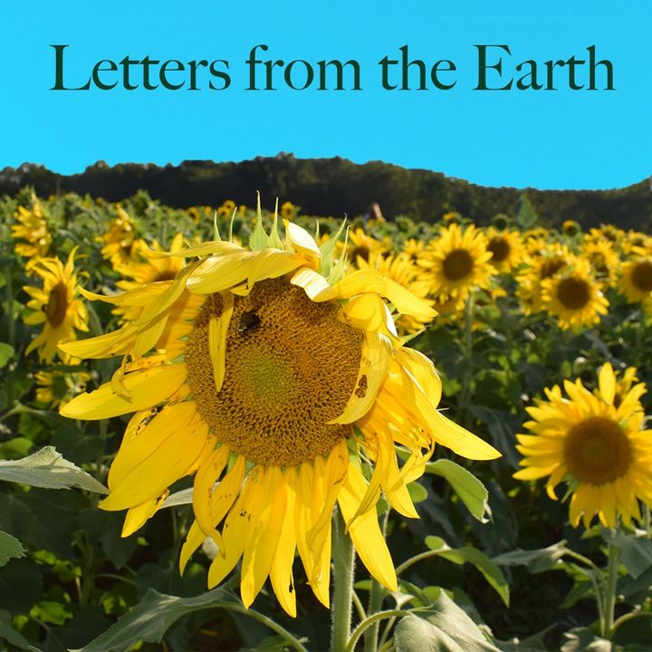 A Letter from the Earth on Independence Day - My Birthday 7/4/18