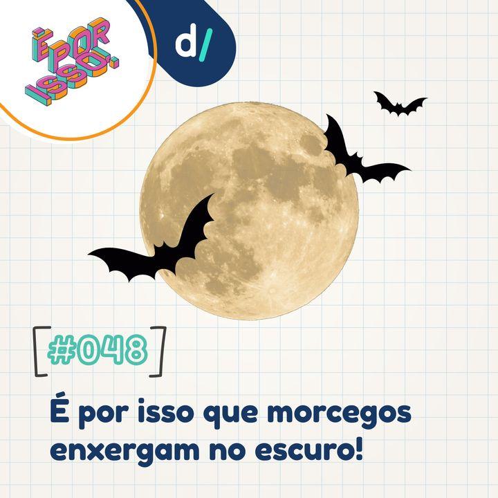 É Por Isso! #48 - É por isso que morcegos enxergam no escuro! 🦇