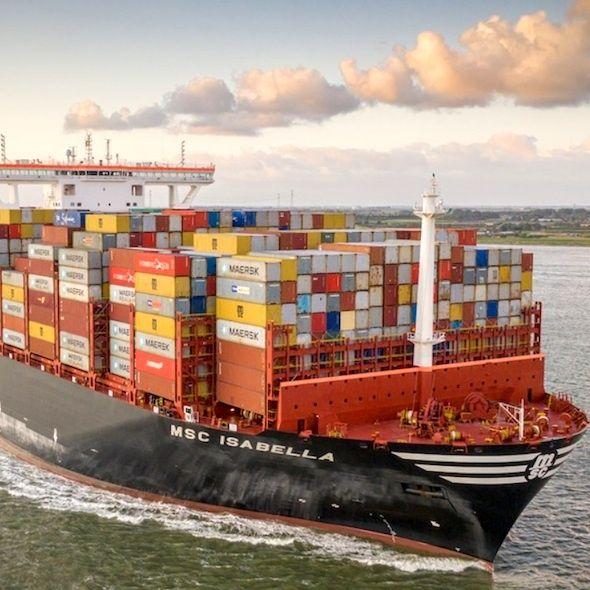 Fenomenologia del container