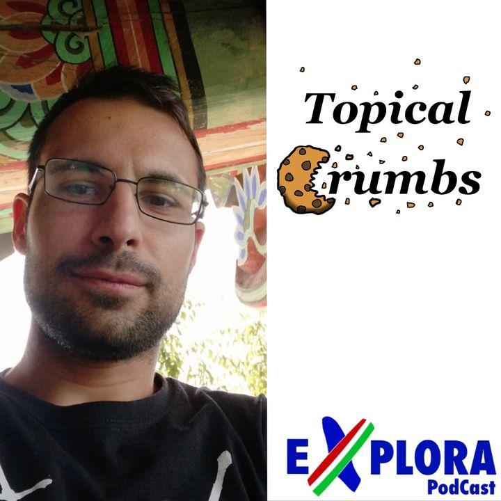 Chiacchiere: Ep.12 con Francesco Carpene di Topical Crumbs, riflessione tra Totalitarismo e Democrazia