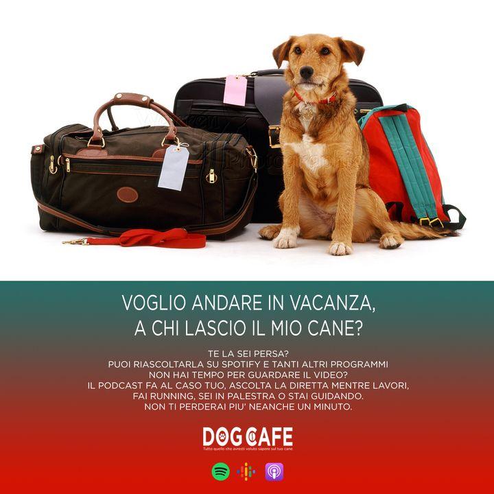 #027 - Voglio andare in vacanza, a chi lascio il mio cane?