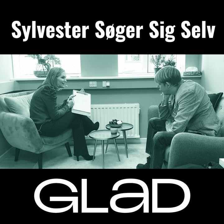 SYLVESTER SØGER SIG SELV - Metakognitiv terapi