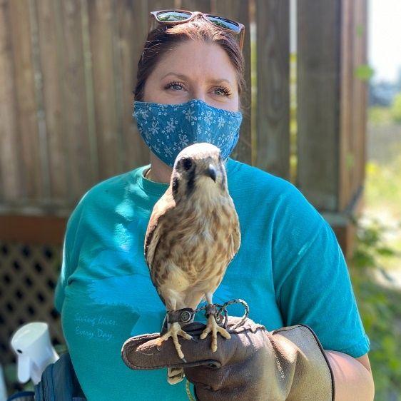 Chintimini Wildlife Center - Kathleen Dodge on Big Blend Radio