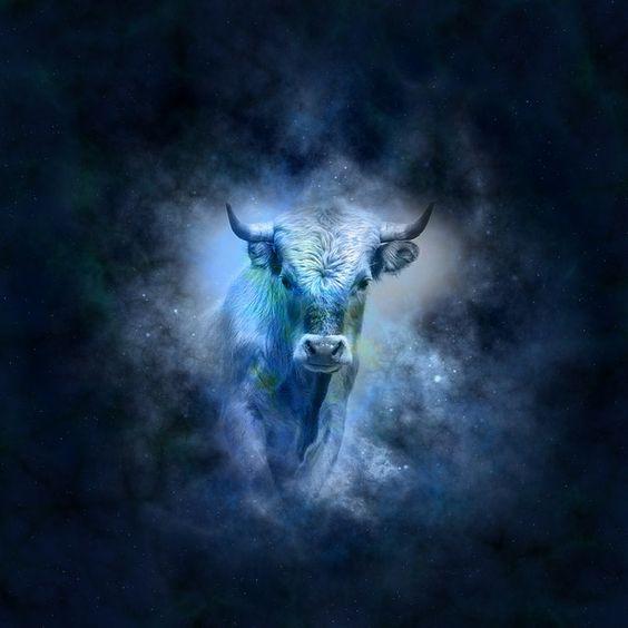 Il segno del toro caratteristiche principali