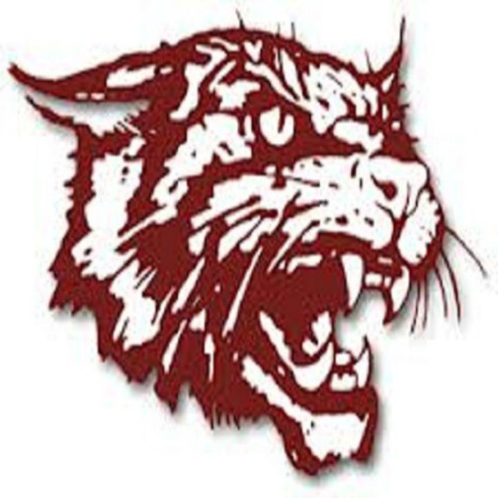 Littlefield Wildcats vs Childress Bobcats 3A basketball Area Championship 2-23-21