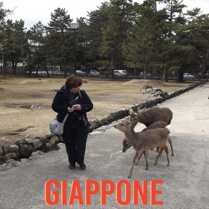 #16  Viaggio in Giappone - Intervista a Claudia Boccini