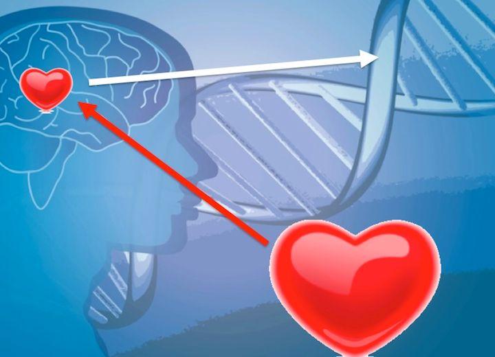 71° puntata - Le emozioni modificano il DNA e il DNA influenza il mondo fisico