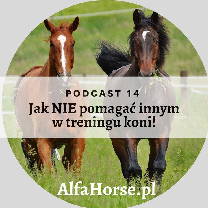 Podcast 14: Jak NIE pomagać innym w treningu koni!