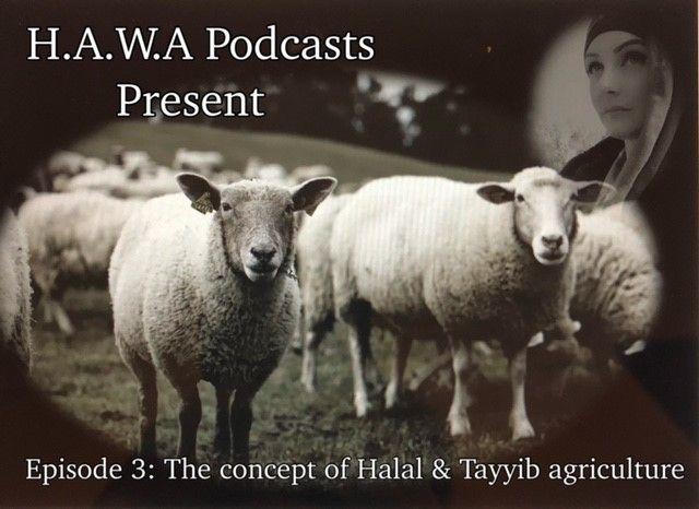 Episode 3: Halal & Tayyib agriculture