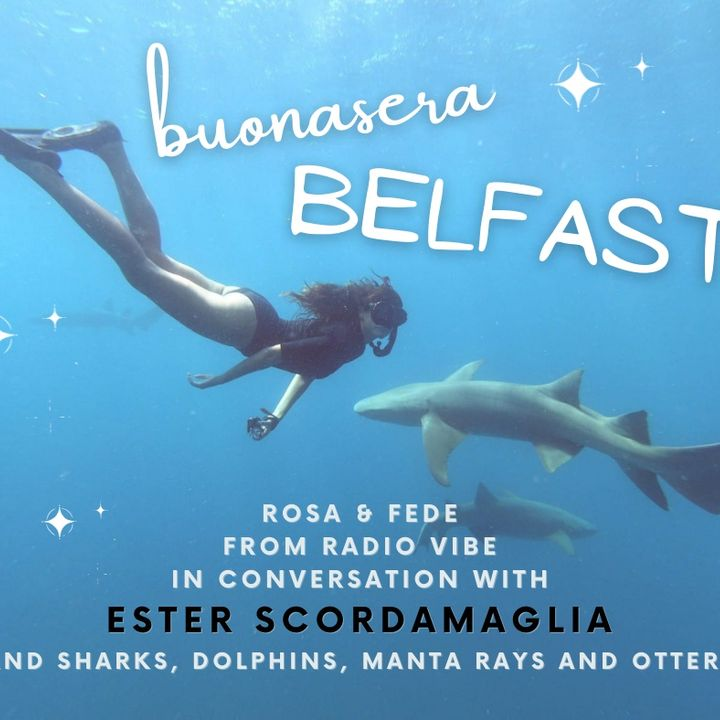 Buonasera, Belfast! #19 | Marine biology with Ester Scordamaglia