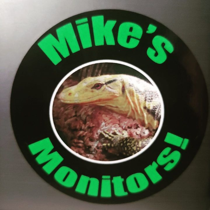 Episode 3: Mike Stefani of Mike's Monitors