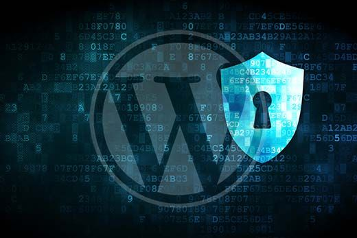 Need For WordPress Security