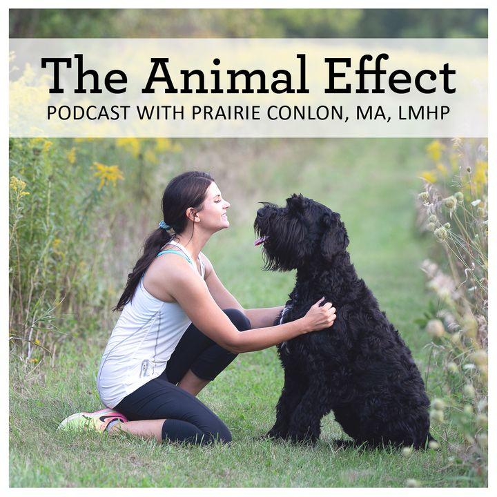 The Animal Effect - Introducing Prairie Conlon