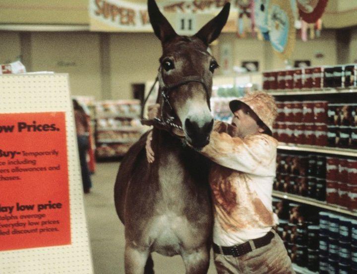 65: Tim Conway, Donkey Fighter