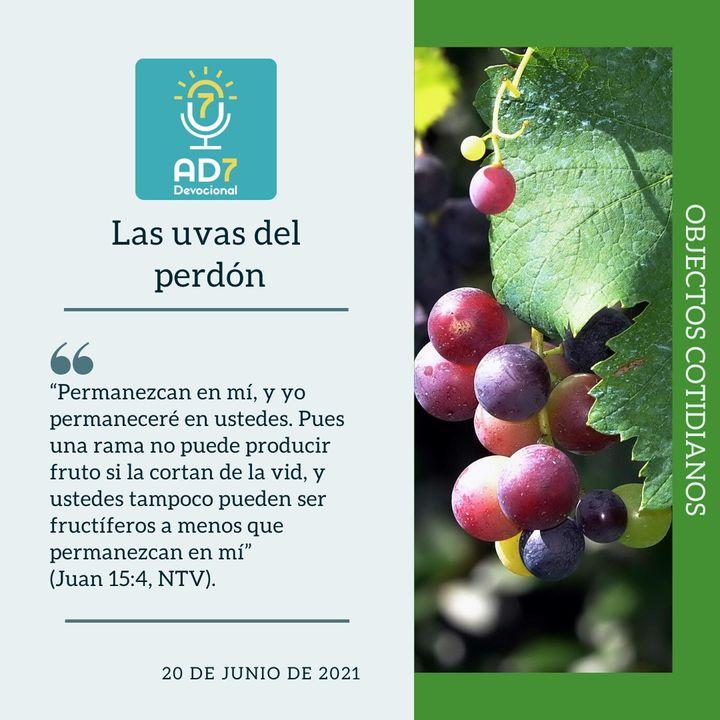 20 de junio - Las uvas del perdón - Devocional de Jóvenes - Etiquetas Para Reflexionar
