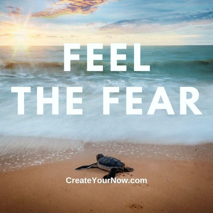 2440 Feel the Fear