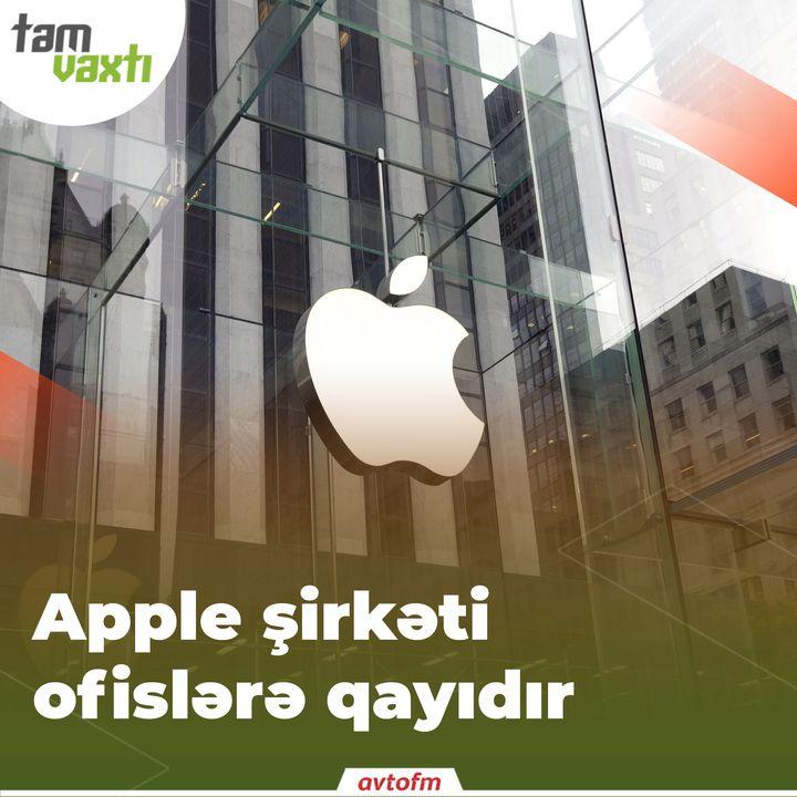 Apple şirkəti ofislərə qayıdır   Tam vaxtı #11