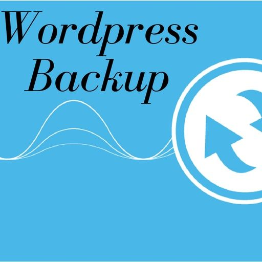 How to Back up a Website Without a Plugin