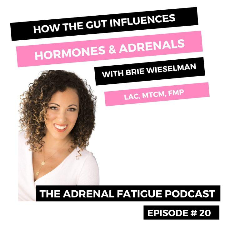 #20: How The Gut Influences Hormones & Adrenals with Brie Wieselman