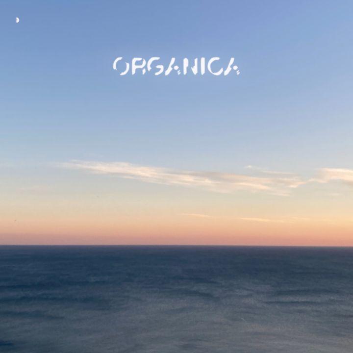 Organica - Dolcemente Elettronica