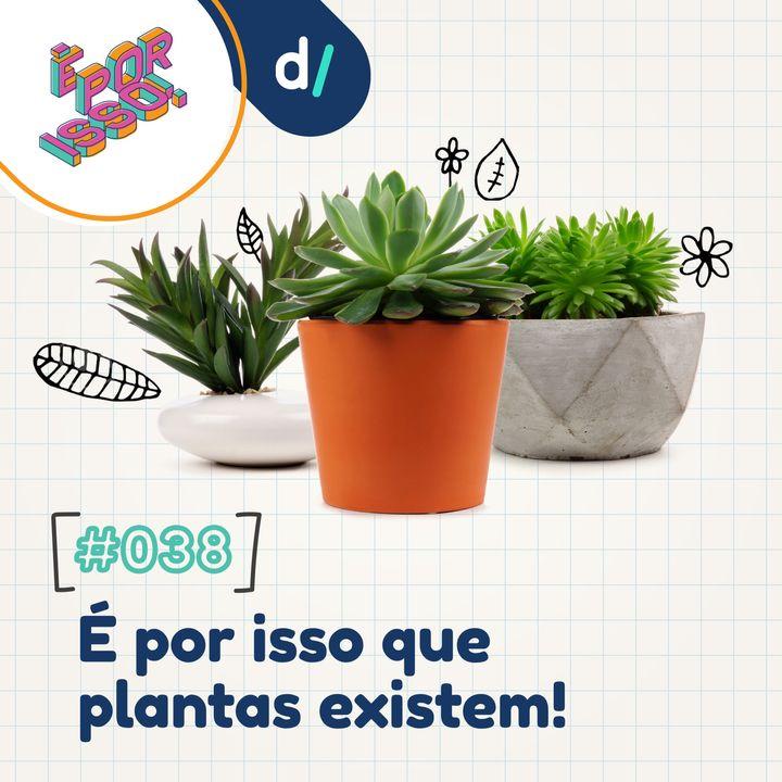 É Por Isso! #38 - É por isso que plantas existem! 🌿