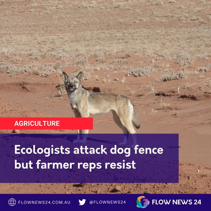 Should Australia abandon the dog fence and reintroduce wild dogs & dingoes? Some ecologists think so