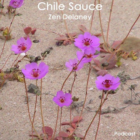 Chile Sauce with Zen Delaney on Lingo Radio  Friday  5 June 2020