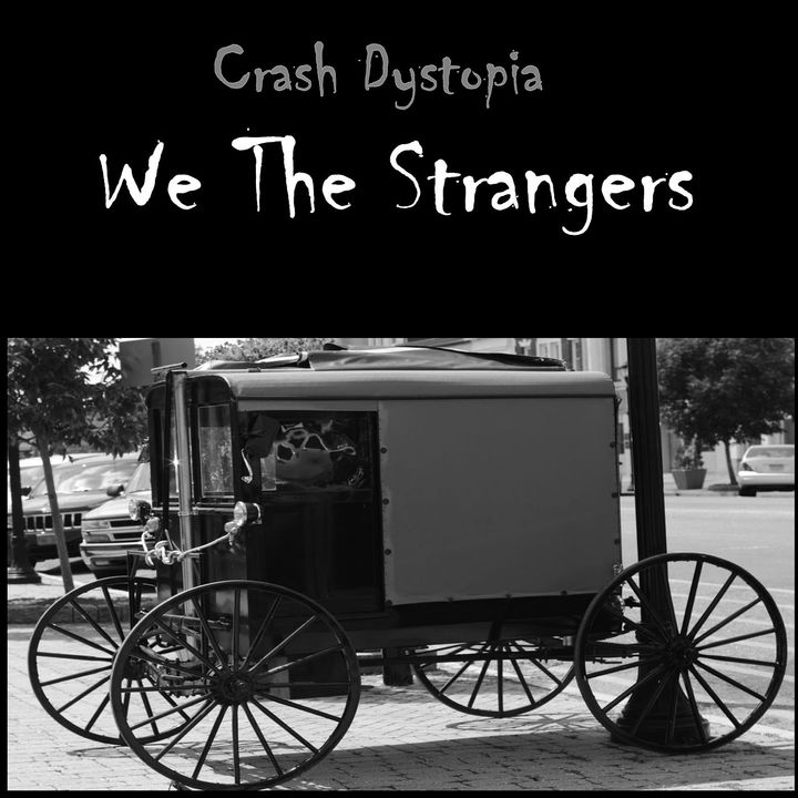 Crash Dystopia We The Strangers