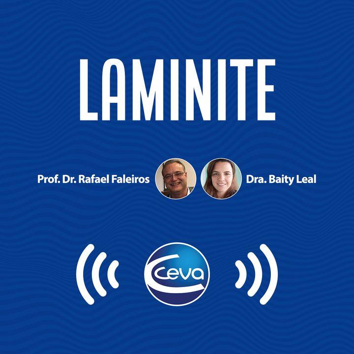 Laminite #01 Do sucesso ao sofrimento