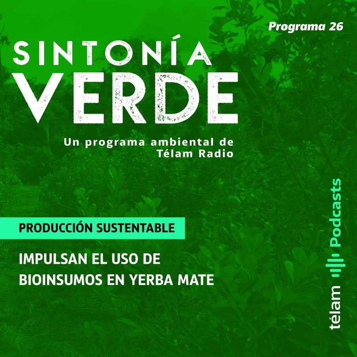 Producción sustentable: Impulsan el uso de bioinsumos en yerba mate