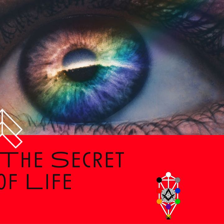 Whence Came You? - 0494 - Art: The Secret of Life