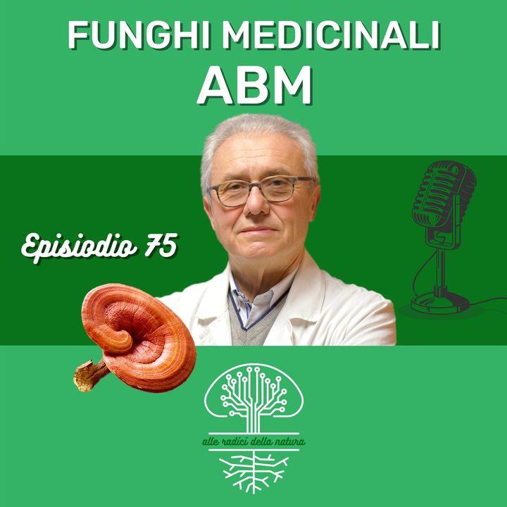 Funghi Medicinali: ABM