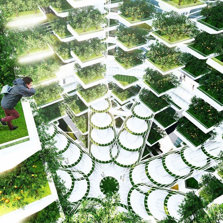 Technomondo - Ecco a voi la fattoria verticale!