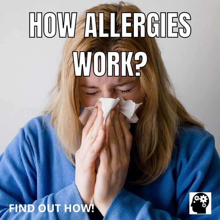 How Does Your Allergy Attack You?