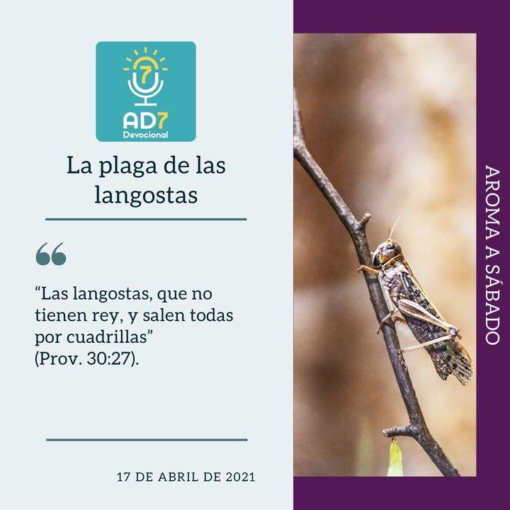 17 de abril - La plaga de las langostas - Devocional de Jóvenes - Etiquetas Para Reflexionar